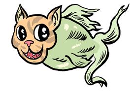 kittenfishing